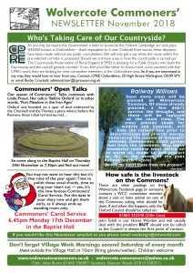 WCC Nov Newsletter